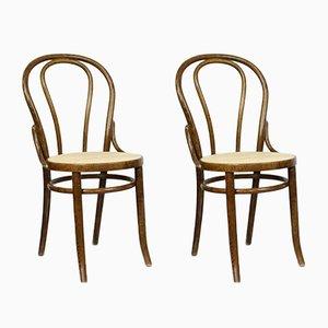 Braune No. 18 Stühle von Michael Thonet, 2er Set