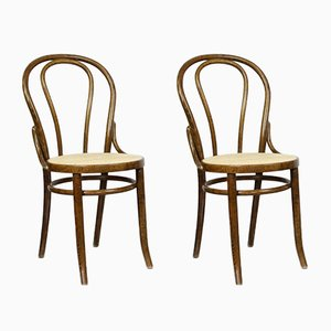 No. 18 Brown Chairs by Michael Thonet, Set of 2