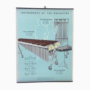 Xylophone, Tubular bells & Glockenspiel Poster, 1950s