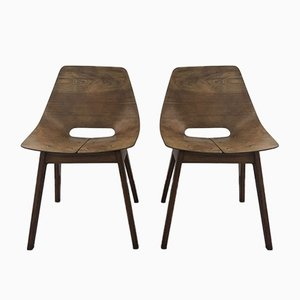 Amsterdam Style Chairs by Pierre Guariche for Steiner, 1954, Set of 2