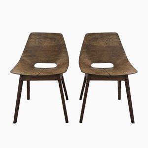 Stühle im Amsterdamer Stil von Pierre Guariche für Steiner, 1954, 2er Set