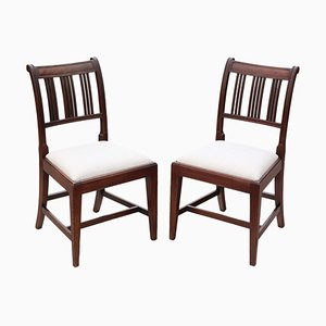 Mahogany Dining Chairs, Set of 2