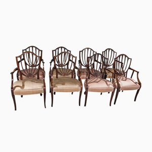 Mahogany Shieldback Carver Chairs Pale Pink, 1960s, Set of 8