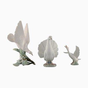 Spanish Porcelain Bird Figurines, 1970s, Set of 3