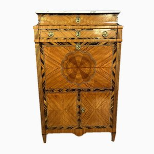 Louis XVI Inlaid Wood with Leaves in Net Frames Secretaire