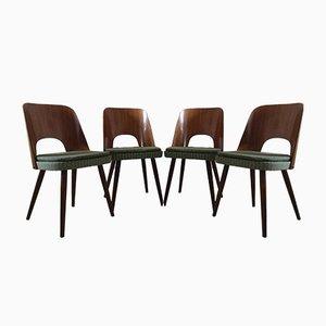 Mid-Century Esszimmerstühle von Oswald Haerdtl für TON, 1950er, 4er Set