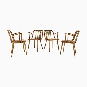 Dining Chairs by Antonín Šuman, 1960s, Set of 5