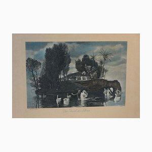 Arnold Böcklin, Die Insel des Lebens, Arbeit auf Papier