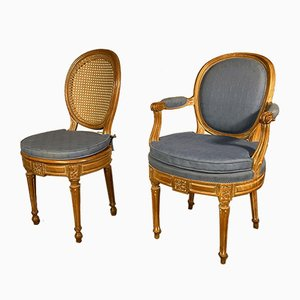 18th Century Louis XVI Chairs & Armchairs Set, Set of 14