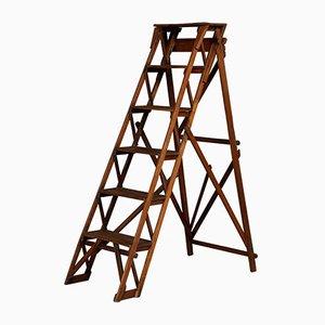 Antike Englische Stufenleiter aus englischem Eichenholz, 20. Jh