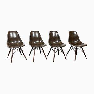 Vintage DSW Fiberglass Shell Chairs, Set of 4