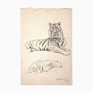 Wilhelm Lorenz, Study of a Tiger, Pencil on Paper, Late 20th Century