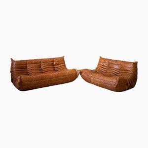 Juego de sofá Togo de dos asientos y tres asientos de cuero y pino de Michel Ducaroy para Ligne Roset, años 70. Juego de 2