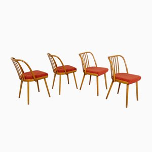 Dining Chairs by Antonín Šuman for TON, 1960s, Set of 4