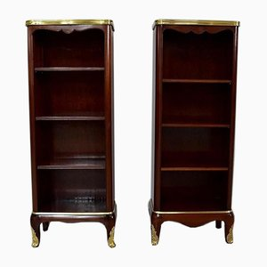 Small 19th Century Mahogany Cabinets by Paul Sormani, Set of 2