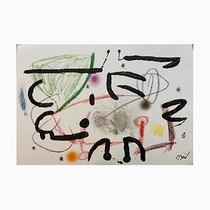 Joan Miró, Wonders Acrostic Variations In the Garden of Miro 15, Lithograph, 1975