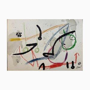 Joan Miró, Wonders With Acrostic Variations Im Jardin De Miró 9, Lithografie, 1975