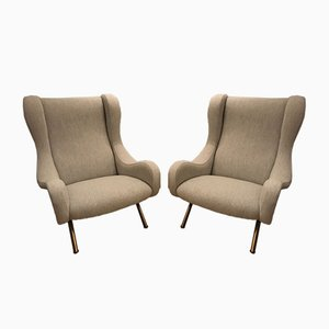 Mid-Century Senior Lounge Chairs by Marco Zanuso for Arflex, 1950s, Set of 2
