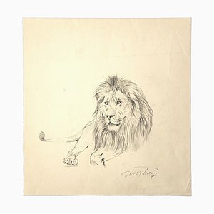 Wilhelm Lorenz - Lion - Original Pencil On Paper by Wilhelm Lorenz - Mid-20th Century