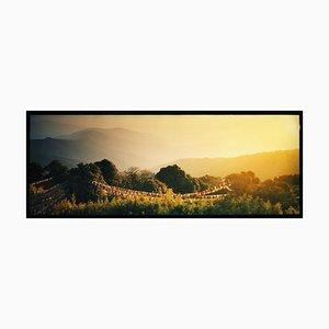 Gebetsfahnen, Darjeeling, - Sunrise, Landscape Color Photography 2013