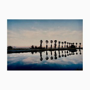 Zzyzx Resort Pool, Soda Dry Lake, California - American Landscape Color Photo 2002