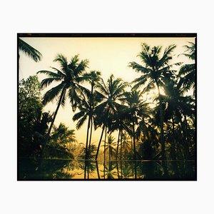 Vetyver Pool, Poovar, Kerala - Indische Farbphotographie Tropischer Palmen Druck 2013