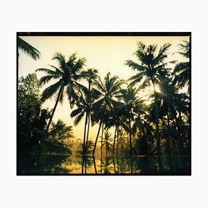 Vetyver Pool, Poovar, Kerala - Tropical Palm Print Indian Color Photography 2013