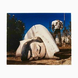Poor Richard - Head & Torso, North Sore, Salton Sea, California - Color Photo 2003