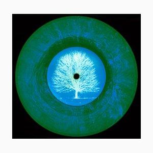 Vinyl Collection - Ltd. Ed. Vinyl - Conceptual, Pop Art Color Photography 2014