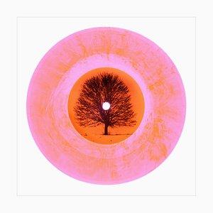 B Side Vinyl Collection - Ltd. Ed. Vinyl (Frühling) - Pop Art Colour Photography 2017