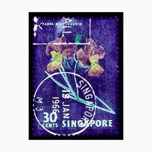 Singapore Stamp Collection, 30c Singapore Orchid Purple - Floral Color Photo 2018