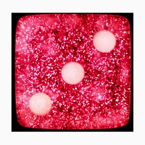 Dice Series, Raspberry Sparkles Three - Conceptual Color Photography 2017