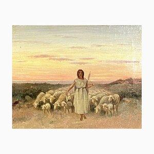 Wool Spinner and His Flock, Late Nineteenth Century, Oil On Canvas, Orientalist School
