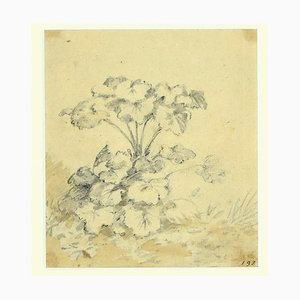 Jan Pieter Verdussen - Flowers - Original China Ink Drawing by Jan Pieter Verdussen - 1740