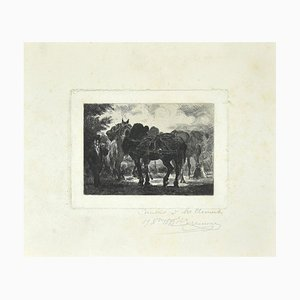Unknown - Horses - Original Etching 19th Century