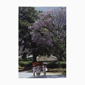 Buddhist Nuns Oversize C Print Framed In Black by Slim Aarons