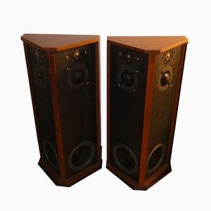 Modell Allison One Lautsprecher von Roy F. Allison für Allison Acoustics, 1976, 2er Set