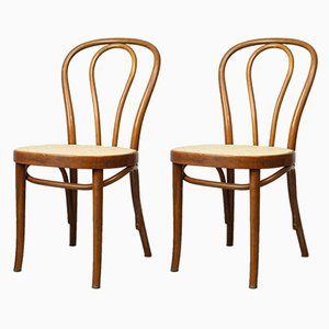 Antique No. 218 Brown Dining Chairs by Michael Thonet, Set of 2