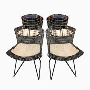 Esszimmerstühle von Harry Bertoia, 1950er, 4er Set