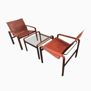 Set with Chairs & Coffee Table by Matteo Grassi, 1970s, Set of 3
