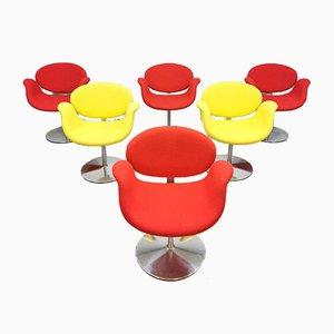 Chaises de Bureau Little Tulip Vintage par Pierre Paulin pour Artifort, Set de 6