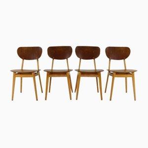 Stühle Sb13 von Cees Braakman für Pastoe