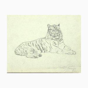 Willy Lorenz, Tiger, Original Bleistift auf Papier, 1958