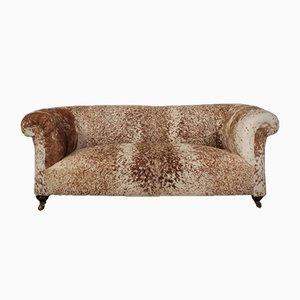 Victorian Cowhide Chesterfield Sofa