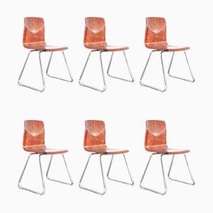 Esszimmerstühle aus Laminiertem Hartholz und Chrom von Pagholz, 1960er, 6er Set