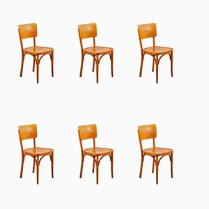 Vintage Classic Wooden Dining Chairs from Horgenglarus, Switzerland, Set of 6