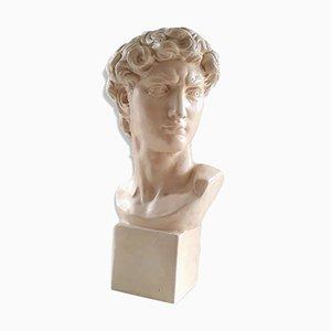 Bust Michelangelo's David