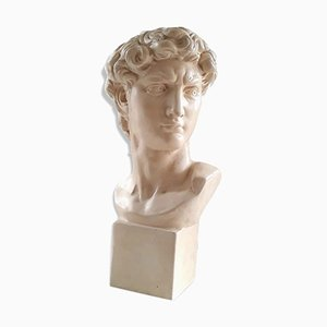 Bust Michelangelos David