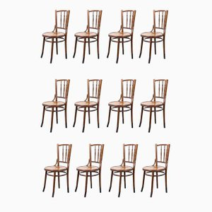 French Bentwood Dining Chairs from Fischel, 1930s, Set of 12