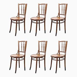 French Bentwood Dining Chairs from Fischel, 1930s, Set of 6